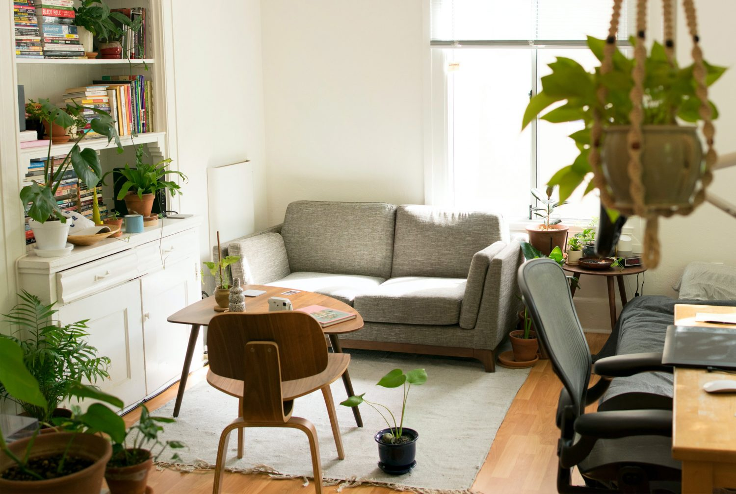Green Living: 10 Indoor Plants For Your HDB Apartment
